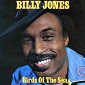 Birds of the Sea by Billy Jones