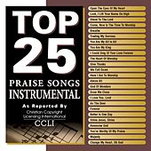 Top 25 Praise Songs: Instrumental by Various Artists
