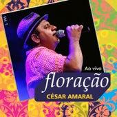 Floração, Vol. 1 (Ao Vivo) de César Amaral