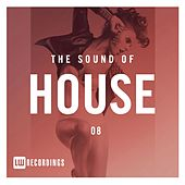 The Sound Of House, Vol. 08 - EP by Various Artists