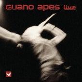 Live von Guano Apes