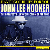 John Lee Hooker (Have I Got Blues Got You) von John Lee Hooker