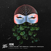 Rising (feat. Mont Blvck) - Single by Anabel Englund