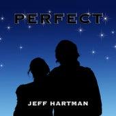 Perfect by Jeff Hartman