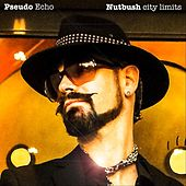 Nutbush City Limits by Pseudo Echo