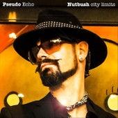 Nutbush City Limits von Pseudo Echo