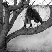 Ana y los Pájaros by Christina Rosenvinge