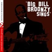 Big Bill Broonzy Sings (Digitally Remastered) by Big Bill Broonzy