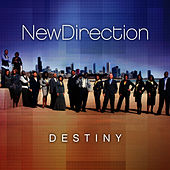 Destiny de New Direction