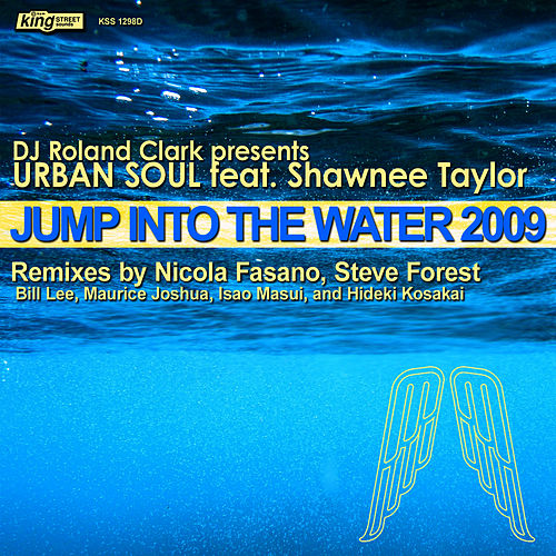 Jump Into The Water 2009 by DJ Roland Clark