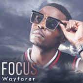 Focus de Wayfarer
