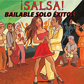 Salsa Bailable Solo Éxitos by Various Artists