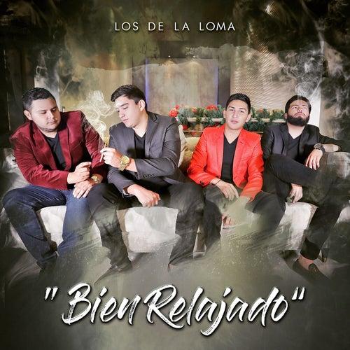 Bien Relajado by Los De La Loma