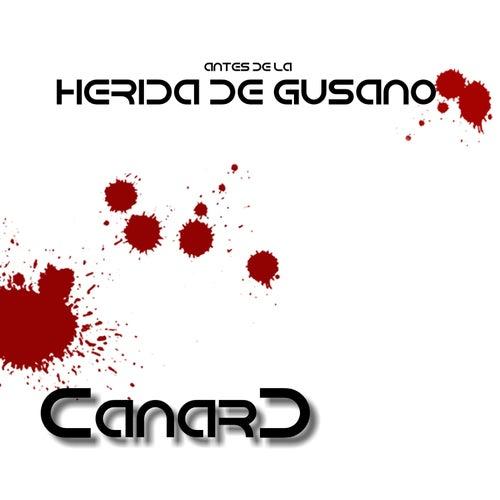 Antes De La Herida De Gusano by Canard