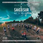 Rut 15 Millones by La Saicosur