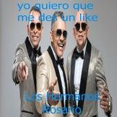 Yo Quiero Que Me Des Un Like by Los Hermanos Rosario