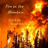 Fire on the Mountain von Dave