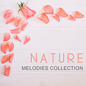 Nature Melodies Collection de Sounds Of Nature