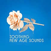 Soothing New Age Sounds von Soothing Sounds