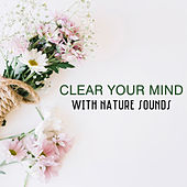 Clear Your Mind With Nature Sounds by Nature Sounds (1)