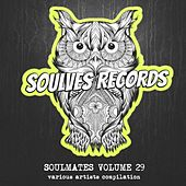 Soulmates, Vol. 29 by Various Artists