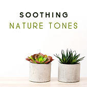 Soothing Nature Tones de Nature Sound Collection