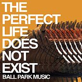 The Perfect Life Does Not Exist by Ball Park Music