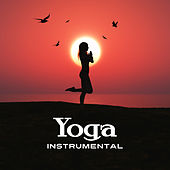 Yoga Instrumental by Echoes of Nature