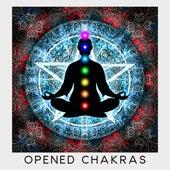Opened Chakras de Reiki Tribe
