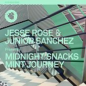 Mint Journey by Jesse Rose