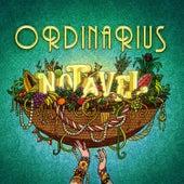 Notável by Ordinarius