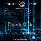 Fragments Of Life by Various Artists