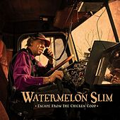 Escape From The Chicken Coop by Watermelon Slim