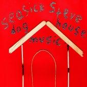 Dog House Music by Seasick Steve