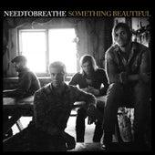 Something Beautiful by Needtobreathe