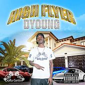 High Flyer by D. Young