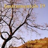 Instrumentals 19 by David Warin Solomons