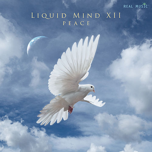 Liquid MInd XII: Peace by Liquid Mind
