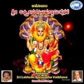 Ahobala Sri Lakhsmi Narasimha Vaibhava by Various Artists