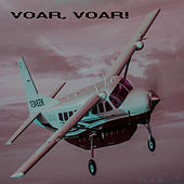 Voar, voar! de Various Artists