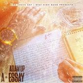 A+ Essay by Adamup