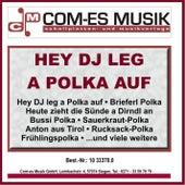Hey DJ leg a Polka auf von Various Artists