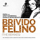 Brivido Felino (feat. Stefy Gamboni & Daniele Bengi Benati) von Papik