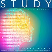 Study Music: Calm Music for Studying, Focus, Concentration, Reading and Ambient Guitar Studying Music by Study Music