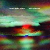 Belongings by Mimicking Birds