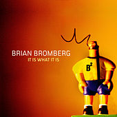 It Is What It Is by Brian Bromberg