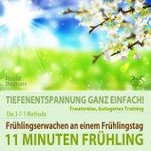 11 Minuten Frühling: Frühlingserwachen - Tiefenentspannung, Traumreise, Autogenes Training von Torsten Abrolat