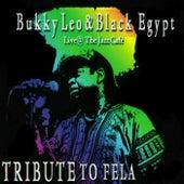 Tribute to Fela, Vol. 1 by Bukky Leo
