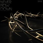 Never Bow Down by Bane