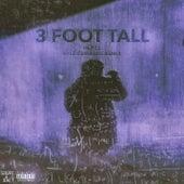 3 Foot Tall (Remix) von Hi-Rez